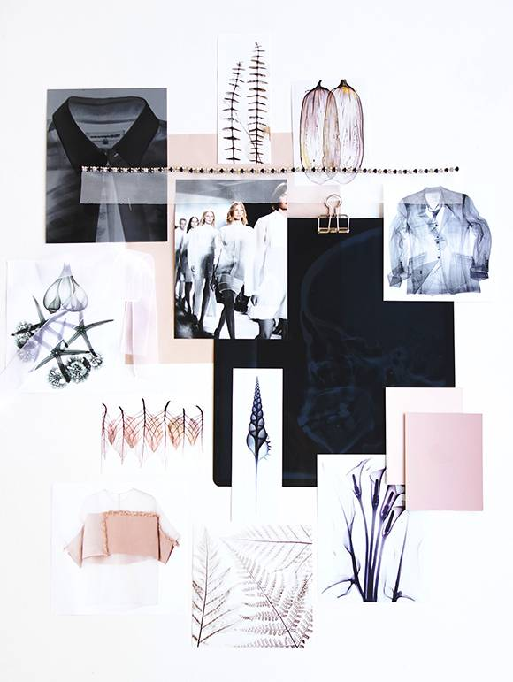Layout Moodboard con Thalassia 2