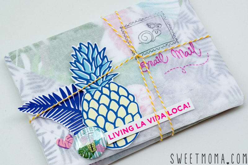 SNAIL MAIL CON PUNCH BOARD 1